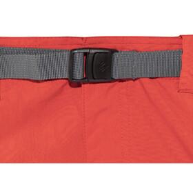 Columbia Silver Ridge Cargo Pantaloni corti Uomo rosso